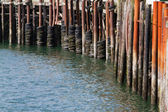 Pier Bumpers — Stock Photo