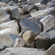 Breaker Boulders - Stock Photo