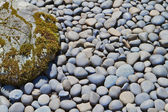 River Rocks and boulder — Stock Photo