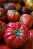 Heritage tomato — Stock Photo
