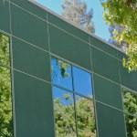 Tree sky reflections — Stock Photo