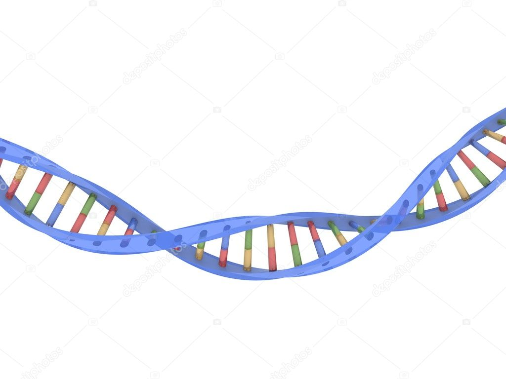 3d rendered illustration of a double helix — Stock Photo #2879768