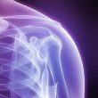 X-ray shoulder — Stock Photo #2895937