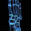 X-ray foot - Stock Photo