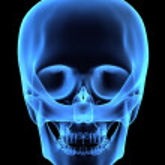 Human skull — Stock Photo #2898129