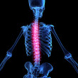 Painful spine - Stock Photo