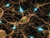 Active nerve cell — Stockfoto