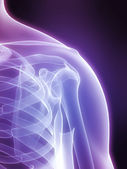 X-ray shoulder — Foto Stock