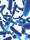 Bacteria — Stock Photo