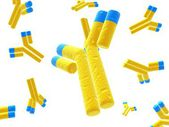 Antibodies — Stock Photo