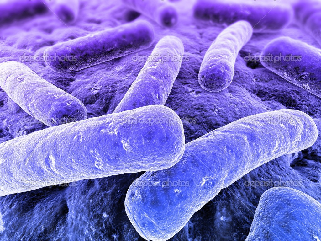 3d renderd illustration of isolated bacteria  Stock Photo #2891109
