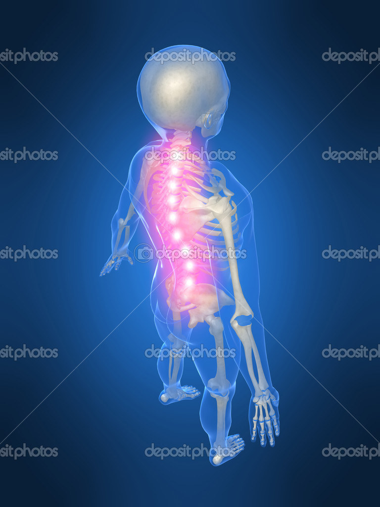 3d rendered illustration of a human skeleton with highlighted spine — Stock Photo #2898459