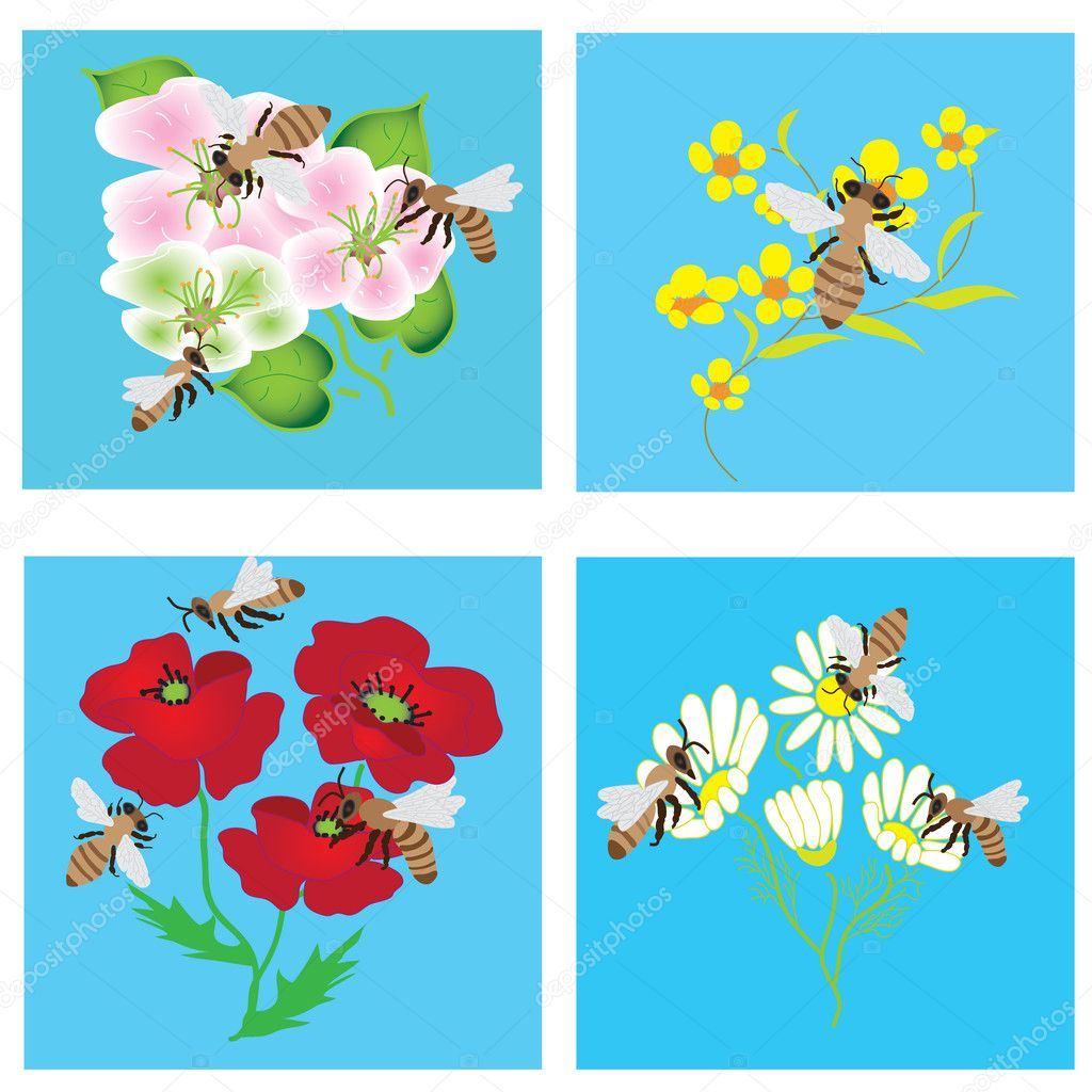 Set of cards with bees and flowers — Stock Vector #2697099