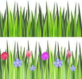 Grass on a meadow — Stock Vector