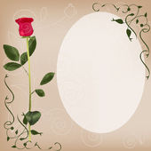 Card with a rose — Stock Vector