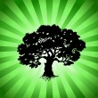 Vector Tree with green burst background — Stok Vektör