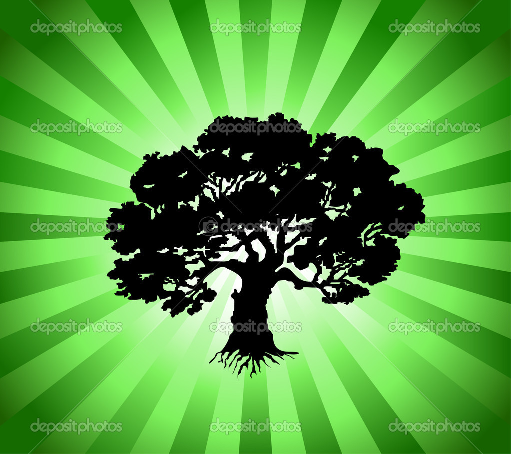 Tree with green burst background. Vector illustration — Stock Vector #3520516
