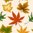 Autumn concept seamless background. Vector — Stock Vector