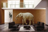Elephant indoor — Stock fotografie