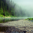 Fog on a river - Stock Photo