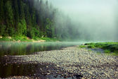 Fog on a river — Stock Photo