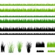 Grass collection, Isolated On White — Imagen vectorial