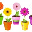 Daisies In Pots With Pictures — Stock Vector