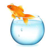 Dreaming Goldfish In Aquarium — Vector de stock