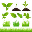 Green Spring Elements Set - Stock Vector