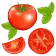 Royalty-Free Stock Vector Image: Tomato With Slices Of Tomato And Basil Leaves