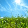 Green Grass With Blue Sky And White Clouds — Stock Photo