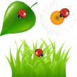 Green Set With Ladybug — Stock Vector