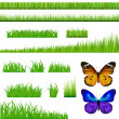 2 Butterflies And Green Grass Set — Stock Vector