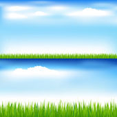 Green Grass And Blue Sky — Stock Vector