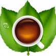 Cup With Tea And Green Leaves — Stock Vector #3683579