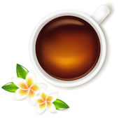 Cup Of Tea Vector Illustration With Frangipani — Stock Vector