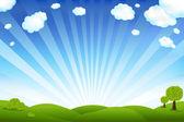Champ vert et bleu ciel — Vecteur