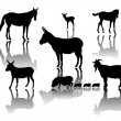 Farm animals with shadows — Stock Vector