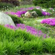 Stock Photo: Garden Design with Rocks and Flowers (5)