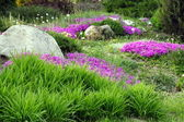 Garden Design with Rocks and Flowers (5) — Stock Photo