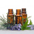 Aroma Oil in Bottles with Lavender, Pine and Mint — Stock Photo
