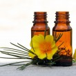 Aroma Oil in Bottles with Pine and Flower — Stock Photo