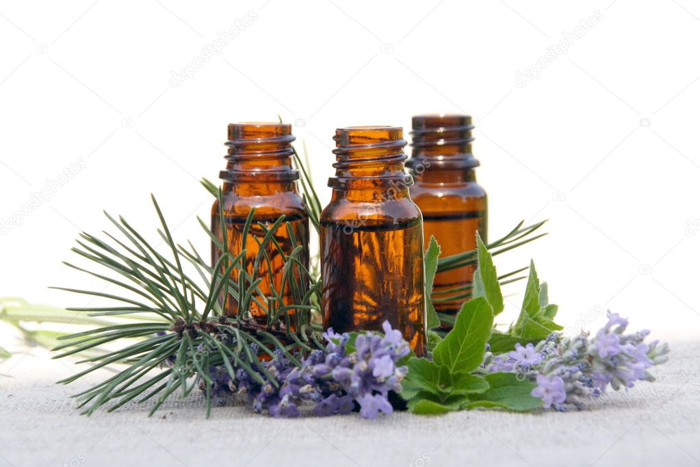 Aromatherapy Aroma Oil in Glass Bottles with Lavender, Pine and Mint — Stock Photo #3562085