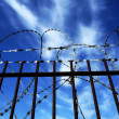 Stock Photo: Razorwire
