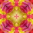 Dahlia Seamless Tile Background — Stock Photo