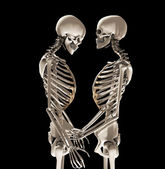 Skeletons In Love — Stock Photo