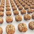 Many Brains — Stock Photo