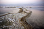 Dead sea salt and water — Stock Photo