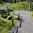 Stock Photo: Japanese garden path