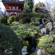 Royalty-Free Stock Photo: Japanese garden